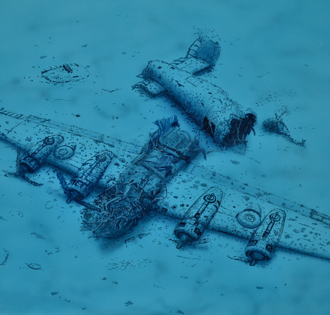 B-24 Liberator Lady Luck - Diving Vis